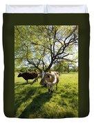 Stunning Texas Longhorns Duvet Cover