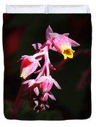Succulent 1 Duvet Cover