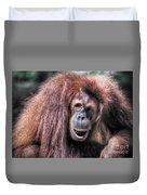 Sumatran Orangutan Duvet Cover