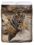 Sumatran Tiger Cub Jumping Onto Rock Duvet Cover