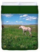 Summer Colt Duvet Cover