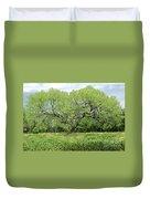 Summer Mesquite Tree Duvet Cover