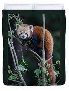 Sumo Posing In Tree Duvet Cover