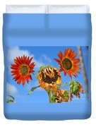 Sun Drenched In Autumn By Diana Sainz Duvet Cover