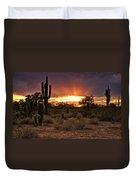Sun Rays Over The Sonoran Desert  Duvet Cover