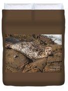 Sunbathing Sea Lion Duvet Cover