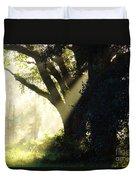 Sunbeam Tree Duvet Cover