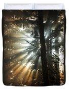 Sunbeams Through Trees Duvet Cover