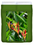 Sunbird On Heliconia Ginger Flowers Singapore Duvet Cover