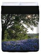 Sunburst Oak And Bluebonnets Duvet Cover
