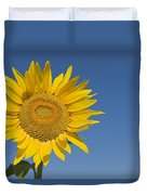 Sunflower, Helianthus Annuus Duvet Cover