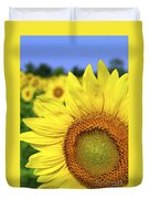 Sunflower In Field Duvet Cover by Elena Elisseeva