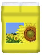 Sunflower In Sunflower Field Duvet Cover by Elena Elisseeva