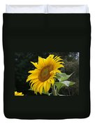 Sunflower Looking To The Sky Duvet Cover