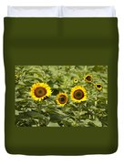 Sunflower Patch Duvet Cover by Bill Cannon