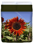 Sunflower Sky Duvet Cover by Kerri Mortenson