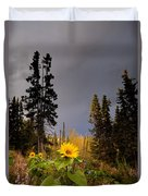 Sunflowers In Northern Garden In Fall Duvet Cover
