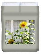 Sunflowers In The Window Duvet Cover