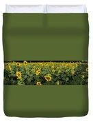 Sunflowers Panorama Duvet Cover