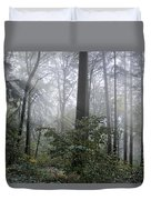 Sunlight And Fog Duvet Cover
