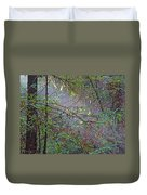 Sunlight Highlights In Armstrong Redwoods State Preserve Near Guerneville-ca Duvet Cover