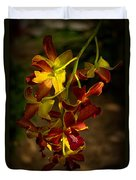 Sunlight Duvet Cover
