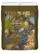 Sunlight On Andreas Creek In Indian Canyons-ca Duvet Cover