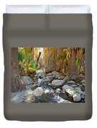 Sunlight Over Rocky Andreas Creek In Indian Canyons-ca Duvet Cover