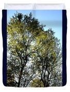 Sunlit 14-1 Duvet Cover