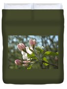 Sunlit Apple Blossoms Duvet Cover