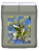 Sunlit Dogwood Blossoms Duvet Cover