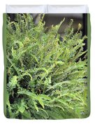 Sunlit Ferns Duvet Cover