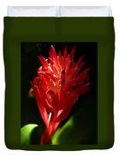 Sunlit Red Bromeliad 2 Duvet Cover