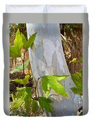 Sunlit Sycamore Leaves In Andreas Canyon In Indian Canyons-ca Duvet Cover