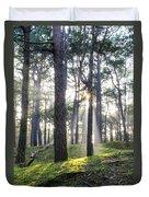 Sunlit Trees Duvet Cover