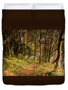Sunlit Woods In Late Autumn Duvet Cover