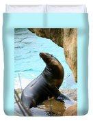 Sunning Sea Lion Duvet Cover
