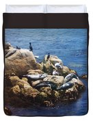 Sunning Seals Duvet Cover