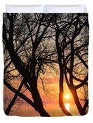Sunrise Through The Chaos Of Willow Branches Duvet Cover