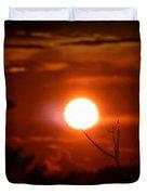 Sunset - Stuck On Tree Branch Duvet Cover