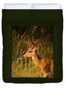 Sunset Buck Duvet Cover