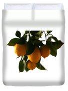 Sunset Lemons Duvet Cover