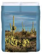 Sunset On The Saguaros Duvet Cover