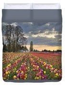 Sunset Over Tulip Flower Farm In Springtime Duvet Cover