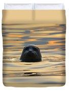 Sunset Seal Duvet Cover