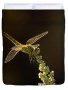 Sunshine On A Landed Dragonfly. Duvet Cover