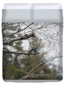 Swallow Discussion Duvet Cover