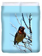 Swallow Glance Duvet Cover