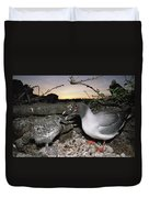 Swallow-tailed Gull And Chick In Pebble Duvet Cover by Tui De Roy