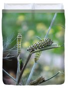 Swallowtail Caterpillars On Dillweed Duvet Cover
